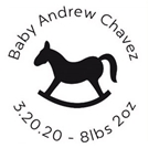 Picture of Andrew Birth Announcement Stamp